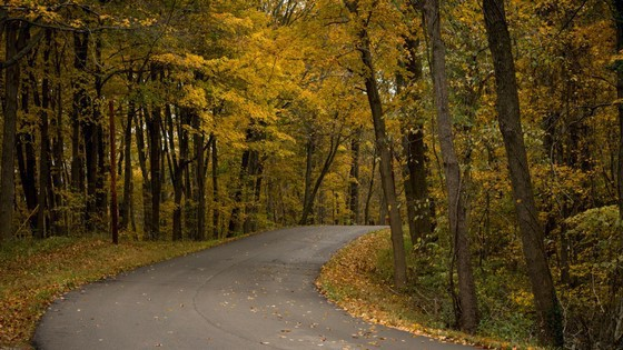 Fall Color Drives in Michigan